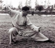 pratique tai chi