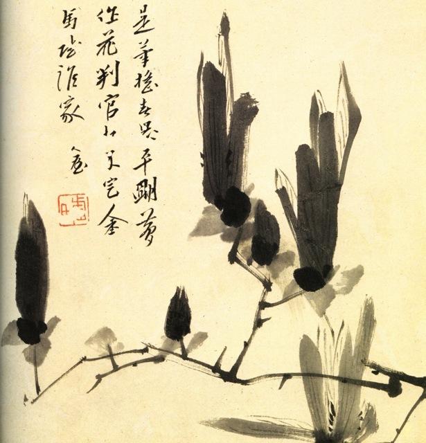 Chu Ta (1626-1705) Branche de magnolia